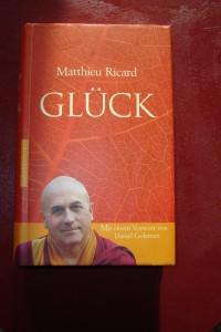Matthieu Ricard Glück
